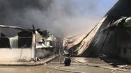 Video: Cháy công ty gỗ gần đường điện cao thế ở Bình Dương