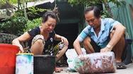 Góc nhìn trưa nay | Độc đáo với nghề bắt gián mưu sinh ở Sài Gòn