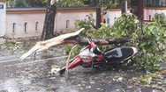 Video: Bão số 5 đang vào đất liền, nhiều nơi ngập đường, gió mạnh