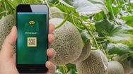 Ứng dụng công nghệ IoT phát triển nông nghiệp bền vững