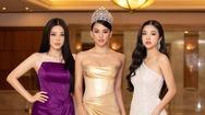 Hoa hậu Việt Nam 2020 khởi động sau 2 lần hoãn vì COVID-19