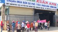 Video: Người dân 'vây' công ty thu mua nông sản để đòi nợ