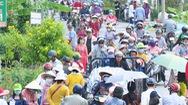 Video: Du khách đổ về làng hoa Sa Đéc, nhiều tuyến đường kẹt cứng
