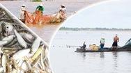 Góc nhìn trưa nay | Người dân miền Tây vui với kéo lưới bắt cá mùa nước nổi