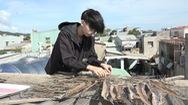 Giấc mơ bác sĩ của cô gái nhỏ làng biển Thọ Quang