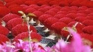 Góc nhìn trưa nay   Làng nhang trăm tuổi đón Tết