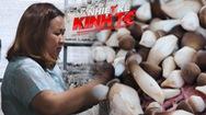 Nhiệt kế kinh tế | Bà chủ trại nấm mối với giấc mơ làm giàu trên quê hương