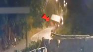 Video: Container lao xuống vực sau va chạm với xe tải trên đèo Bảo Lộc