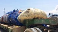 Video: Chở cá voi 10 tấn bằng xe container đến nơi an táng