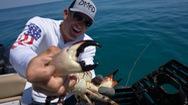Hào hứng chuyến săn cua đá biển đầy bất ngờ ở bang Florida
