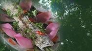 Góc nhìn trưa nay | Khám phá rừng tràm 50 năm tuổi, ăn cá lóc nướng muối