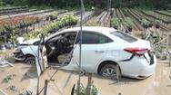 Video: Tìm tài xế thuê xe hơi tự lái, lao xuống ruộng hoa hồng rồi mất dạng