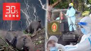 Bản tin 30s Nóng: Cập nhật dịch Covid-19 trên cả nước; Đấu súng từ ô tô; 18 con voi bị sét đánh