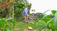 Góc nhìn trưa nay | Bất cập khai thác nước ngầm vùng cù lao