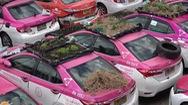 Video: Dịch COVID-19 'đóng băng' taxi, hàng ngàn chiếc ô tô trở thành nơi trồng rau