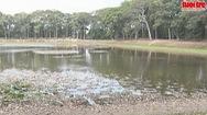 Ao bà Om kêu cứu vì nứt nẻ, khô hạn