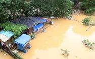 Nước lũ nhấn chìm nhà cửa, vườn tược vùng bãi sông Hồng