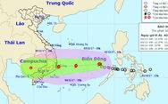 Bình Thuận: Dừng họp, tập trung ứng phó bão số 12