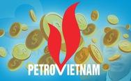 800 tỉ đồng của dầu khí 'bốc hơi' thế nào?