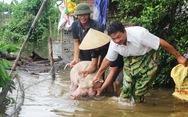 Nước sông Lam dâng nhanh, dân hối hả chạy lụt