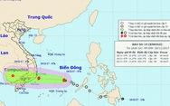 Thủ tướng gửi công điện chỉ đạo đối phó bão số 14