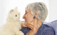 Ứng dụng AI vào mèo robot giúp người già chống trầm cảm