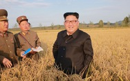 Nga giúp Triều Tiên giảm lệ thuộc hạ tầng mạng vào Trung Quốc
