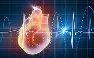 Điện giải và rối loạn nhịp tim