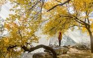 Huyền thoại mùa thu ở Hunza - miền Bắc Pakistan