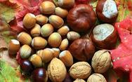 5 thực phẩm ngừa tắc nghẽn mạch