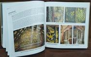 Kiến trúc đình, chùa Việt qua tư liệu Viện Bảo tồn di tích