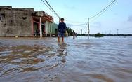 Bình Định sơ tán khẩn cấp hơn 150 hộ dân vì lo vỡ đê