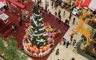 Ngắm thông Noel rực rỡ phố Sài Gòn
