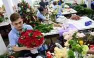 Khách đặt quá nhiều, cửa hàng hoa ngưng nhận trực tuyến