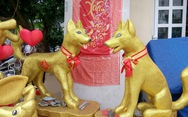 Dân Sài Gòn - Hà Nội bỏ tiền triệu sắm linh vật chó chơi Tết