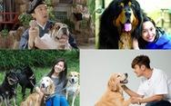 Điểm danh các nghệ sĩ Hoa ngữ tình nguyện làm 'sen cho chó'