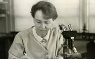 17 nhà khoa học nữ đoạt giải Nobel, họ là ai?