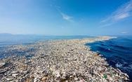 Các nhà khoa học vô tình tìm ra enzyme tiêu hủy được nhựa