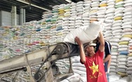 Nông dân phấn khởi vì lúa trúng mùa được giá, lời 45%