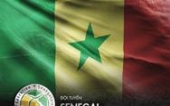 Chân dung tuyển Senegal