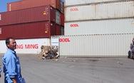 Họp khẩn các tỉnh giải quyết vụ 'hàng ngàn container ứ đọng vì thông tư'