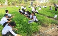 Câu lạc bộ nông gia trong trường cấp 2