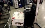 'Giám sát chặt' mà hành lý vẫn bị rạch?