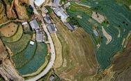 Những vùng đất trồng dược liệu đạt chuẩn thế giới ngay tại Việt Nam