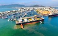 48 người trên 4 tàu vận tải bị trôi neo, mắc cạn tại biển Quy Nhơn