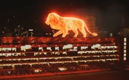 Sư tử ảo khổng lồ tung hoành oai vệ trên sân vận động