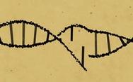 Công nghệ mới có thể sửa 89% lỗi gen