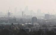 Ra luật không khí sạch để chống ô nhiễm