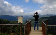 Ngắm biển mây trôi giữa rừng xanh Đỉnh Quế quanh năm mát lạnh