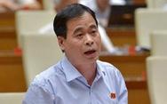 Người Việt nhập cư lậu ở nước ngoài: Hồi chuông cảnh báo trách nhiệm quản lý nhà nước